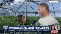 Orages: cet agriculteur devrait débourser 18.000 euros pour réparer les dégâts survenus sur le plastique de sa bâche