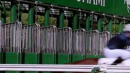 Nouvel Hippodrome de Paris Longchamps