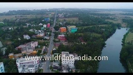 Birds eye view of Bakkhali beach in the evening  | 4k Aerial stock footage