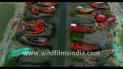 Beautiful red boats and green grass water way stationed under Dashmile Bridge, West Bengal, India. 4k Aerial stock footage