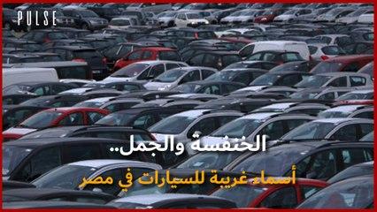 أسماء غريبة للسيارات في مصر