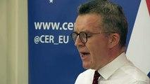 Deputy leader urges Labour to back Remain