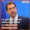 Quotas d'immigration: Christophe Castaner relance le débat
