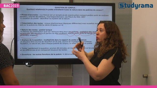 Bac 2019 : le corrigé de l'épreuve de français, série ES et S
