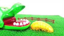 Various All Monster Roly-Poly insect step into the Fumbling toy Box Spo Spo Movie