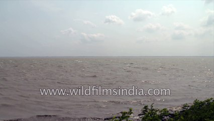 Waves of West Bengal | Beautiful boats and local transportation, 4k stock footage