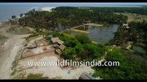 Aerial stock footage 4K- Sunama Park, Susni Island Mangroves, Bakkhali Sunset Point , West Beach Side , Kargil Beach , Frasergunj Harbour, West Bengal,  Bay of Bengal , India