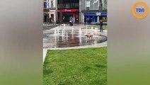 En Angleterre, un chien s'amuse comme un fou avec des fontaines !