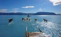 El hielo en Groenlandia se derrite a un ritmo alarmante