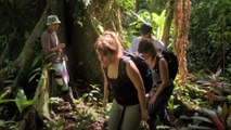 À la recherche d'un antivenin universel #1 | Sur les routes de la science Costa Rica