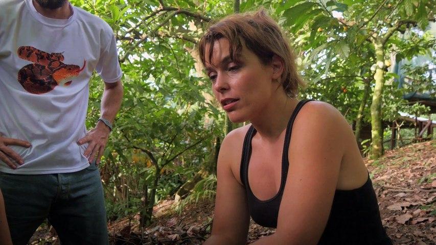 À la recherche d'un antivenin universel #3   Sur les routes de la science Costa Rica