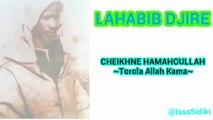 Lahabib Djire - Cheikhne Hamahoullah Torola