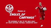 Feature: Tunisia AFCON team profile