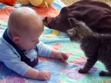 Cats And Babies Cuddling  Compilation 2019 | Cats Videos Compilation | Animal Videos | Viral Videos - Nature is Amazing