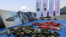 Fethiye'de deniz dibi temizliği yapıldı - MUĞLA