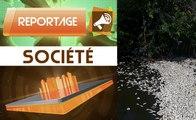 Reportage : Des poissons d'origine douteuse à Abidjan