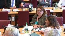 Commission des affaires étrangères : Mers et océans : quelle stratégie pour la France ? - Mercredi 19 juin 2019