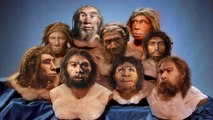 Most SURPRISING Things You Probably Didn't Know About HOMO SAPIENS!