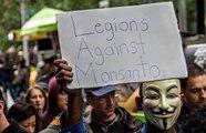 Monsanto perd tous ses procès à cause de ses pesticides