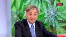 OVPL. Débat cannabis. « Je trouve absolument extraordinaire l'argument qui est utilisé qui consiste à dire parce qu'on ne peut pas empêcher le phénomène, on va le légaliser.» François Grosdidier sénateur (LR)