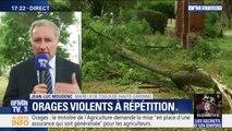 """Selon le maire de Toulouse, les orages """"ont été très soudains et très violents"""""""