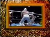 Negro Casas/El Felino/Ultimo Dragon vs El Hijo del Santo/Dr. Wagner Jr/Emilio Charles Jr (CMLL June 22nd, 1997)