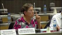 Impact des énergies renouvelables : Auditions diverses - Jeudi 20 juin 2019