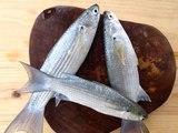 Manger dans le respect de l'environnement grâce aux viandes et poissons artificiels