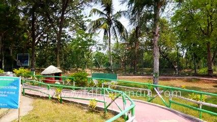 Sajnekhali Ecotourism Centre Museum in Sunderbans Tiger Reserve .