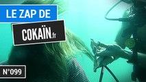 Le Zap de Cokaïn.fr n°099