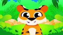 Where is My Tail?   Where is my Bum?   Can You Help Tiger Boo Boo and Looney Baboon? By Little Angel