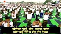दिल्ली से न्यूयॉर्क तक मनाया गया अंतरराष्ट्रीय योग दिवस-दैनिक भास्कर हिंदी
