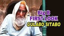 Big B FIRST LOOK | GULABO SITABO | Old Man Avatar