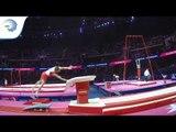Matthias SCHWAB (AUT) - 2018 Artistic Gymnastics Europeans, qualification vault