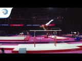 Adam BABOS (HUN) - 2018 Artistic Gymnastics Europeans, qualification parallel bars