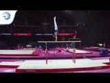 Marcus STENBERG (SWE) - 2018 Artistic Gymnastics Europeans, junior qualification parallel bars