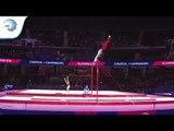Daniel PONIZIL (CZE) - 2018 Artistic Gymnastics Europeans, junior qualification high bar