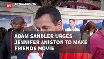 Adam Sandler Wants A 'Friends' Movie