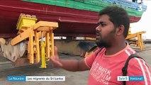 La Réunion : les migrants du Sri Lanka