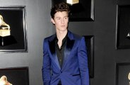 Shawn Mendes' tour outfits inspired by Elvis Presley
