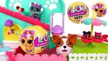 Chubby Puppies Pet Fun Center, Pororo Playground LOL pets surprise - PinkyPopTOY