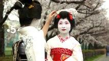 [BA] Échappées belles : le Japon des cerisiers en fleurs - 29/06/2019