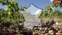 Route des vins : Provence