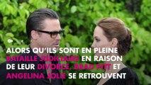 Brad Pitt et Angelina Jolie : Leur vin bat un nouveau record