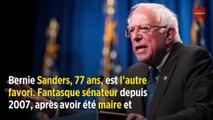 Qui sont les candidats à la primaire démocrate ?