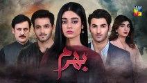 Bharam Episode #33 Promo HUM TV Drama