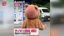 Japonya'da görülmemiş aslan yakalama tatbikatı