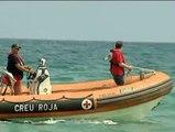 Alerta por tiburones en varias playas del Maresme en Barcelona