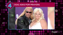 Dog the Bounty Hunter's Wife Beth Chapman Is in Medically-Induced Coma