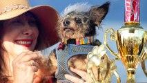 Scamp the Tramp élu chien le plus moche du monde en 2019